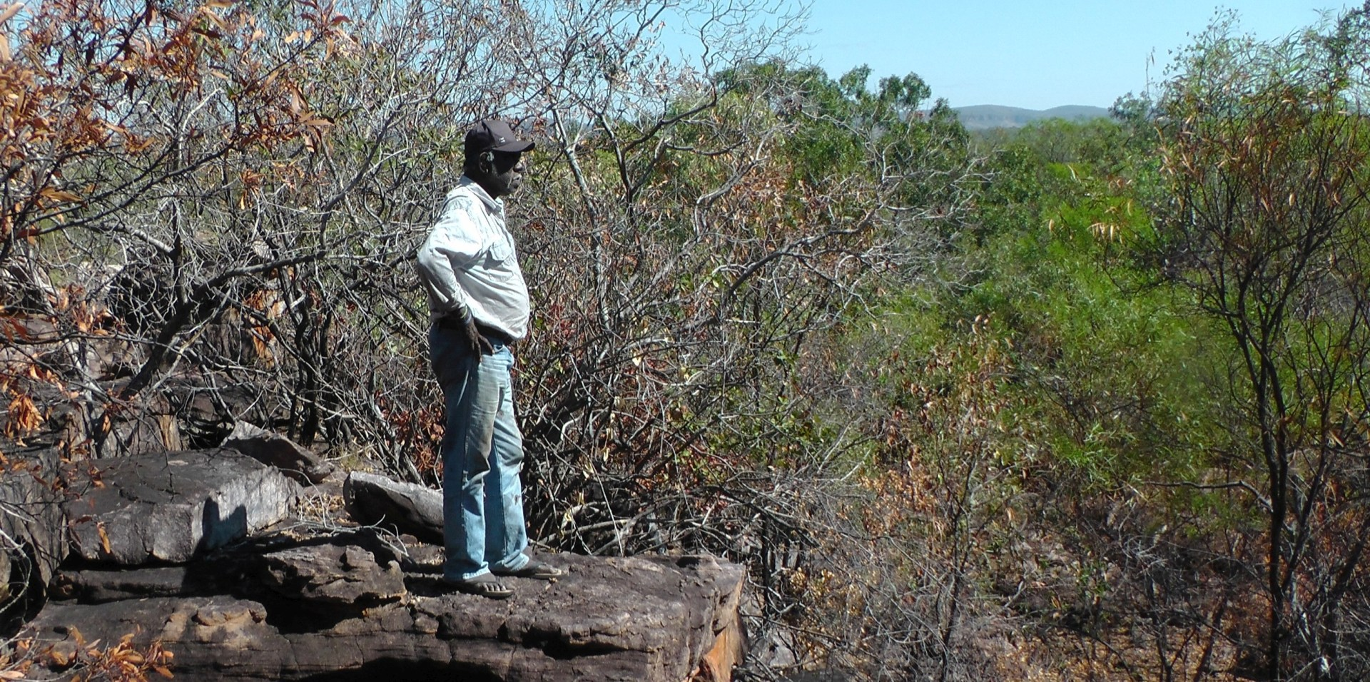The Kimberley Voice Eddie Bear - Traditional Owner of Majaddin